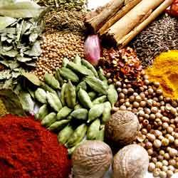 Spices Icon